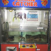 Lobster vending machine